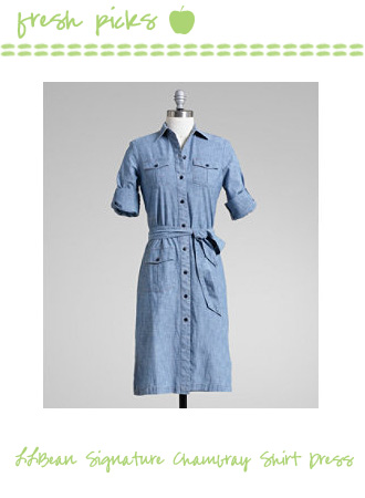 L.L. Bean Signature Chambray Shirt Dress